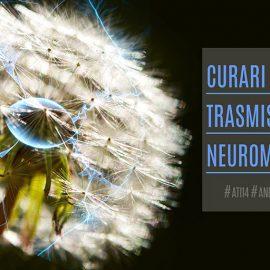Curari-Trasmissione-Neuromuscolare-ATI14-Anestesisti-Rianimatori